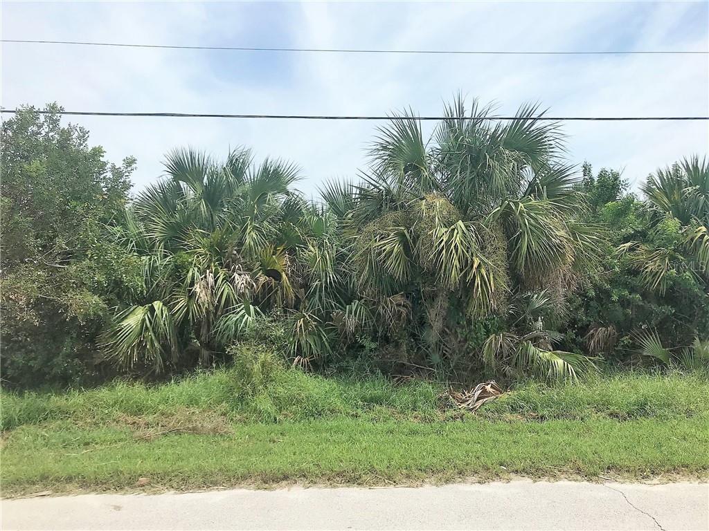 4603 VAN KLEECK DR Property Photo - NEW SMYRNA BEACH, FL real estate listing