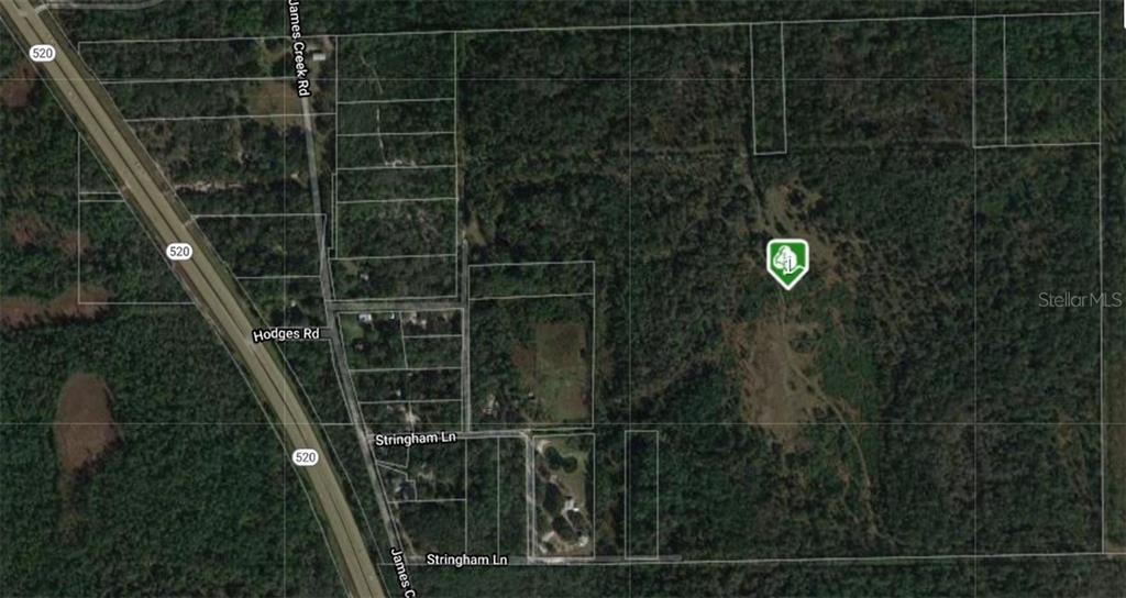 9675 JAMES CREEK ROAD Property Photo - CHRISTMAS, FL real estate listing