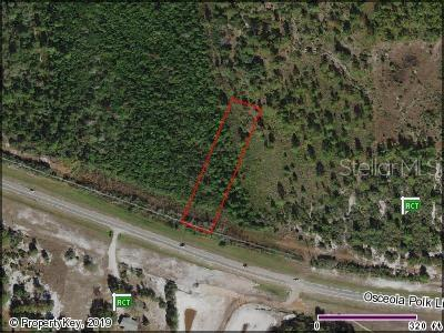 OSCEOLA POLK LINE ROAD Property Photo - DAVENPORT, FL real estate listing