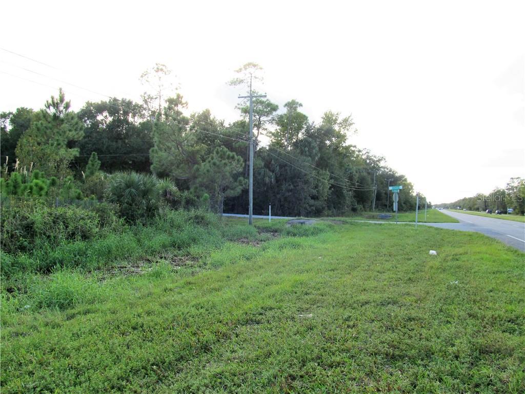 24502 E COLONIAL Property Photo - CHRISTMAS, FL real estate listing