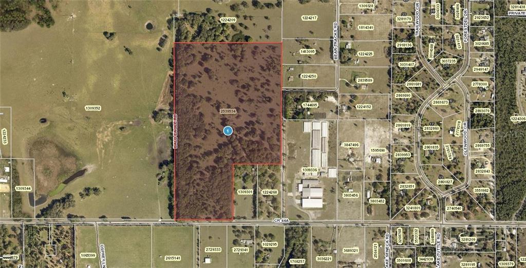 BALD EAGLE RD Property Photo - EUSTIS, FL real estate listing