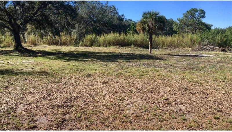 580 N ZAMBRIA ST Property Photo - CLEWISTON, FL real estate listing