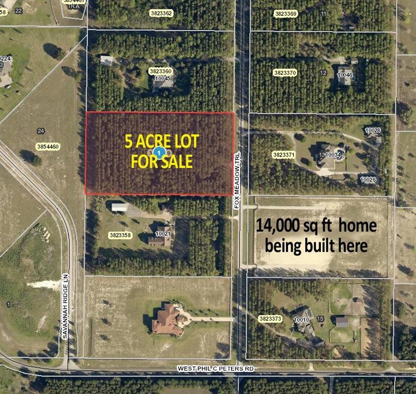 10033 FOX MEADOW TRAIL Property Photo - WINTER GARDEN, FL real estate listing