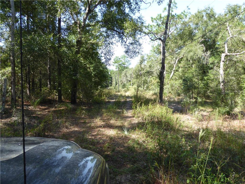 1131 Silver Saddle Trail Property Photo