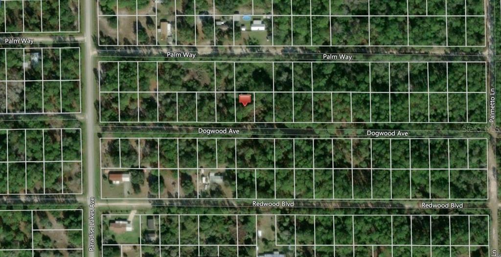 314 DOGWOOD AVENUE Property Photo - GEORGETOWN, FL real estate listing