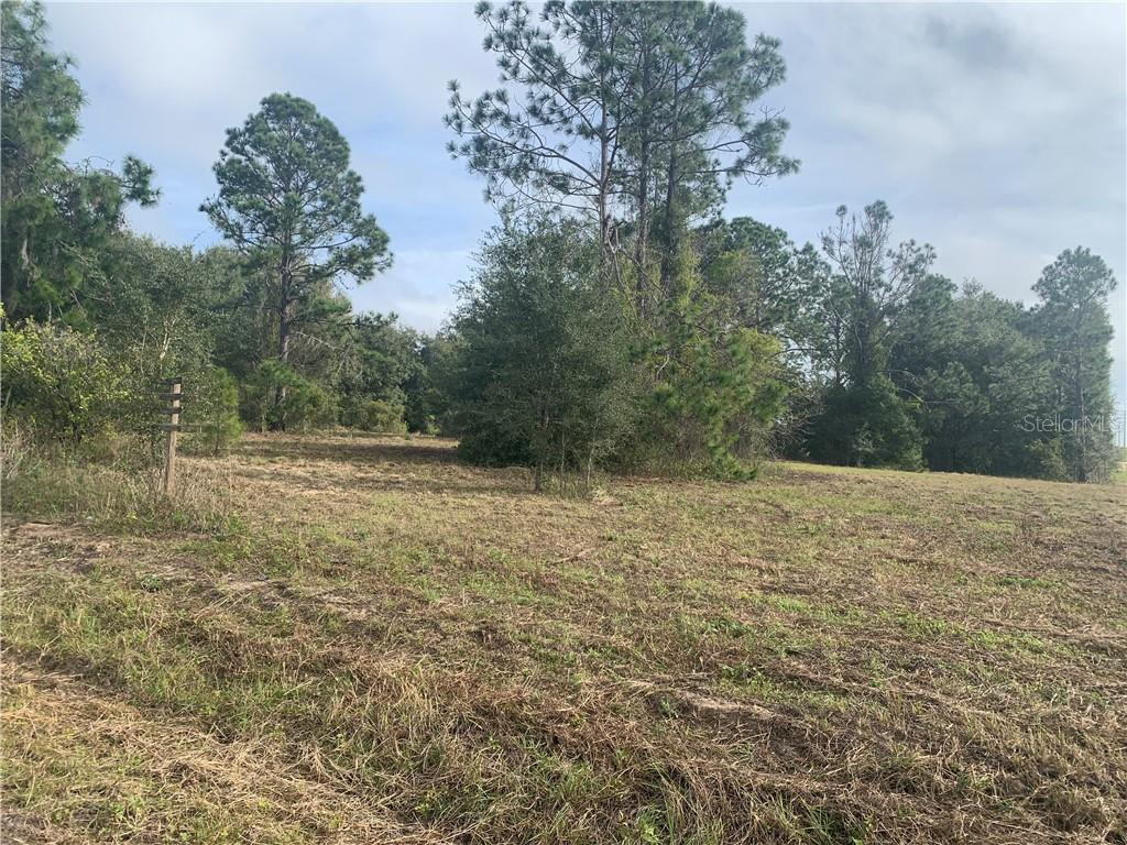 Lot 1 N Cherry Lake Groves Road Property Photo
