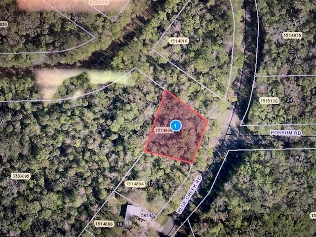 56165 BLUE CREEK RD Property Photo - ASTOR, FL real estate listing