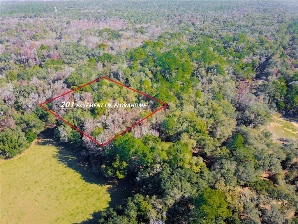 201 EASEMENT LN Property Photo - FLORAHOME, FL real estate listing