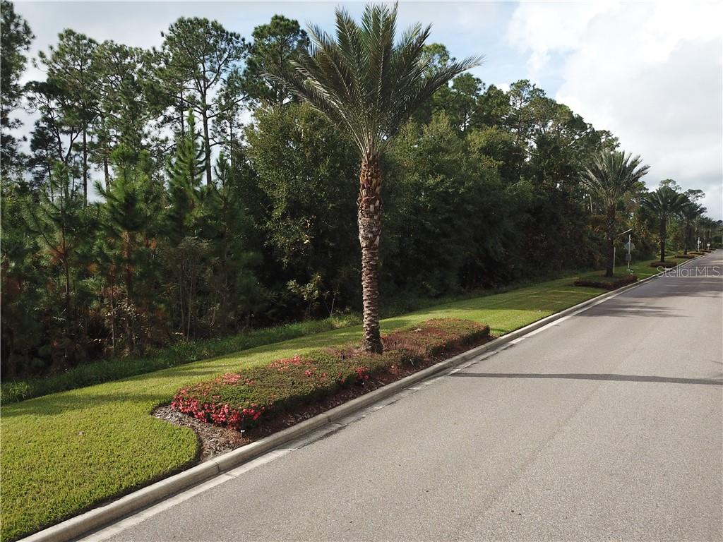 17500 GROVE BLOSSOM WAY Property Photo - WINTER GARDEN, FL real estate listing