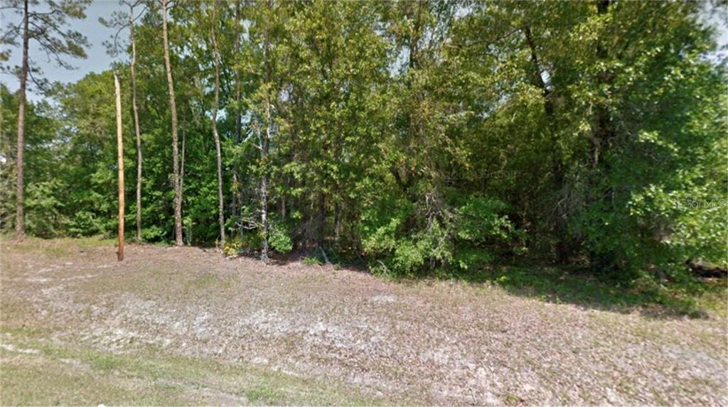 7102 NW COUNTRY RD 229 Property Photo - STARKE, FL real estate listing