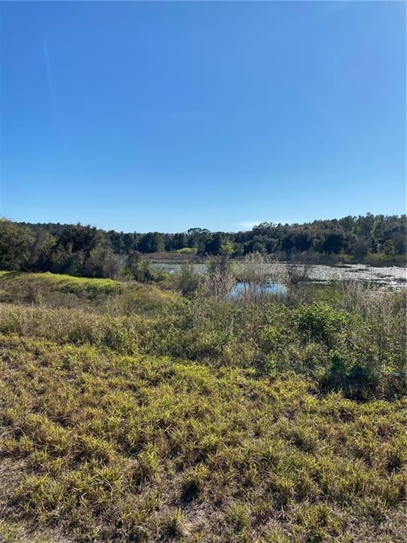 16103 Voltera Point Property Photo
