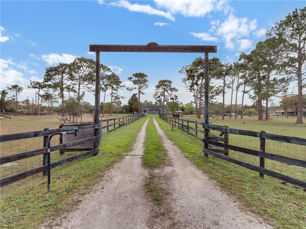2455 CURRYVILLE ROAD Property Photo - CHULUOTA, FL real estate listing