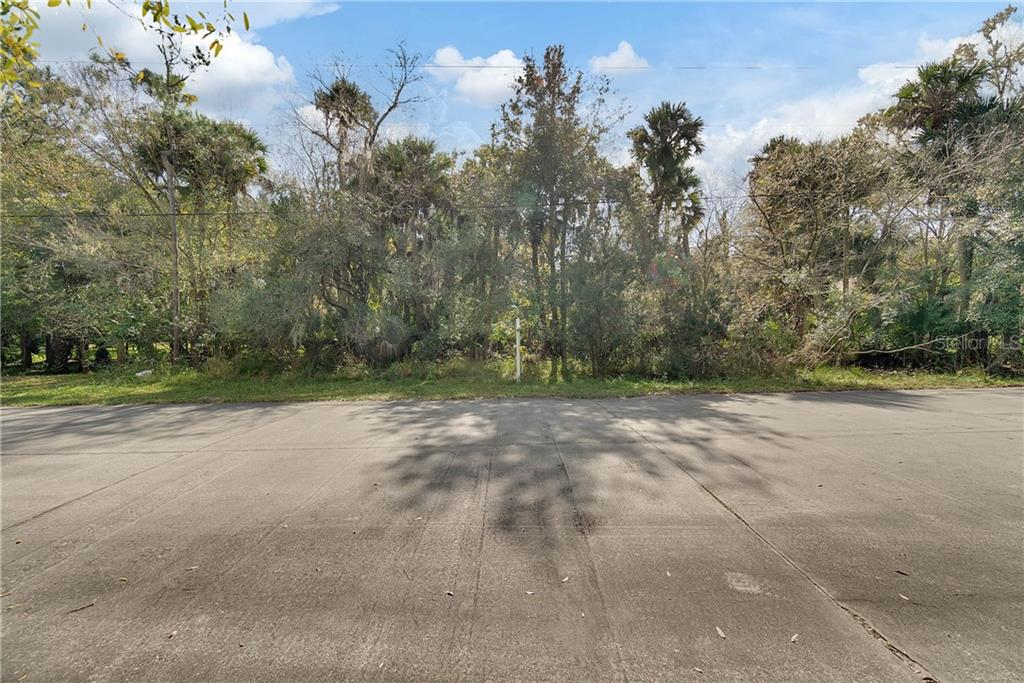 5555 CANVASBACK DR Property Photo - MIMS, FL real estate listing