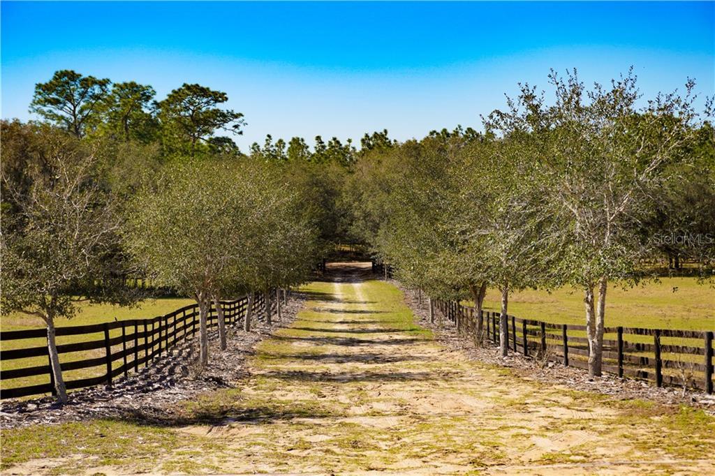 13191 S MAJESTIC PT Property Photo - FLORAL CITY, FL real estate listing