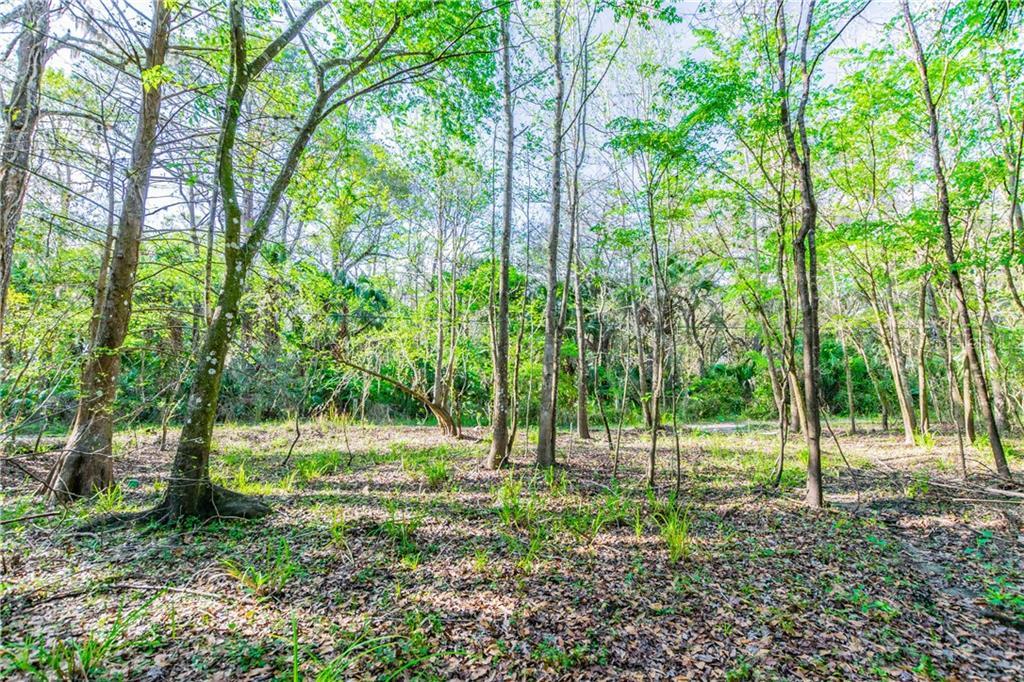 WACCASSA Property Photo - GENEVA, FL real estate listing