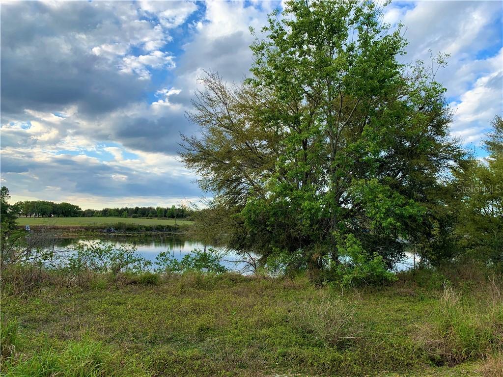 Turkey Lake Road Property Photo