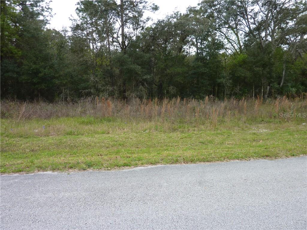 SPANISH OAK TRAIL Property Photo