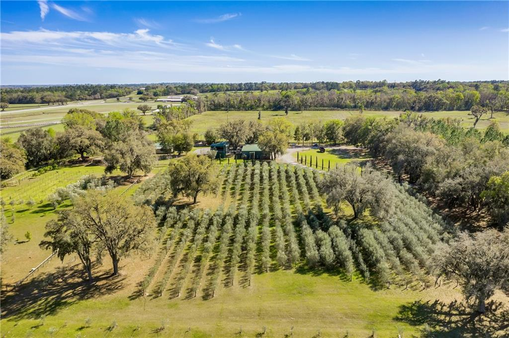9501 W HIGHWAY 326 Property Photo - OCALA, FL real estate listing