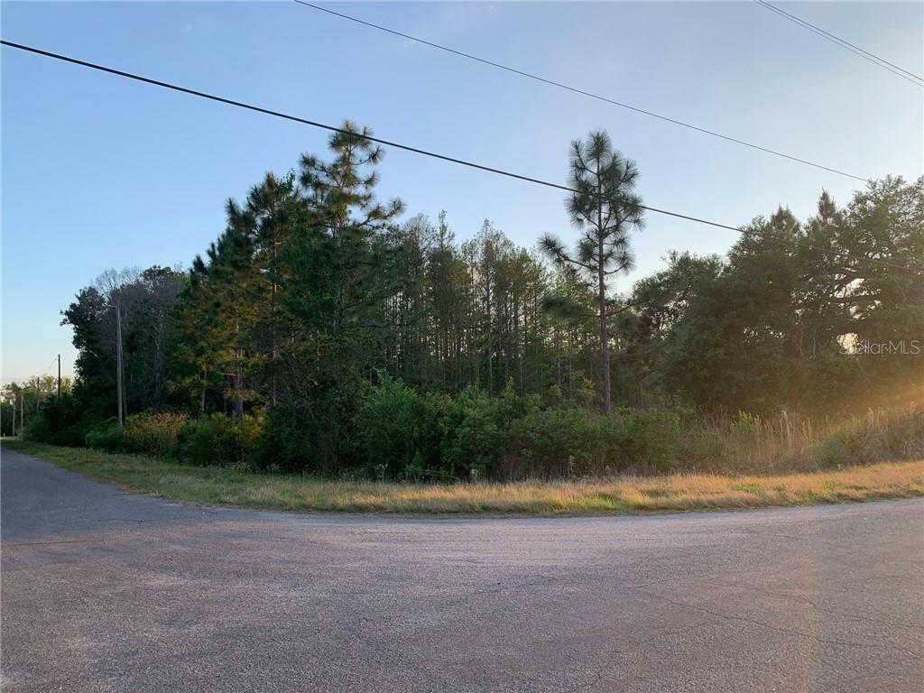 Calvert Avenue #12a Property Photo