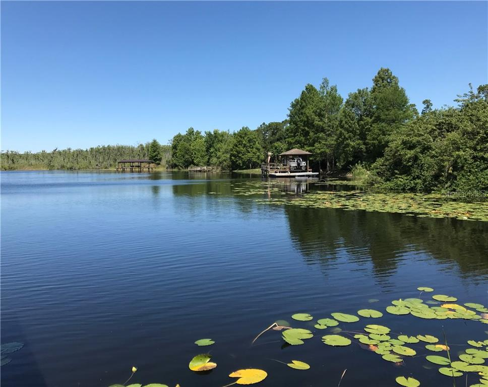 9224 Island Lake Court Property Photo