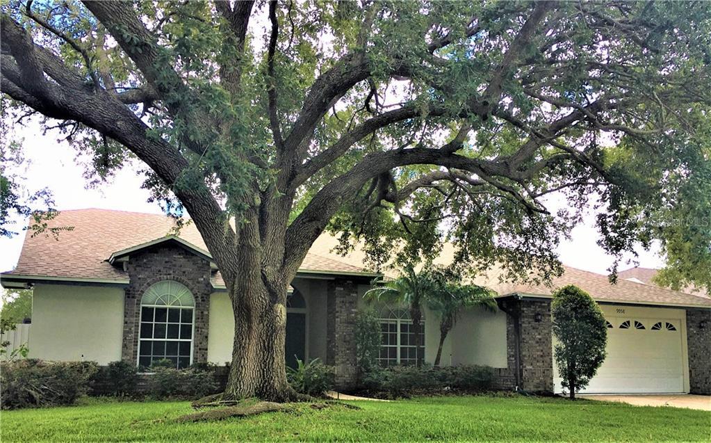 9058 PALOS VERDE DR Property Photo - ORLANDO, FL real estate listing