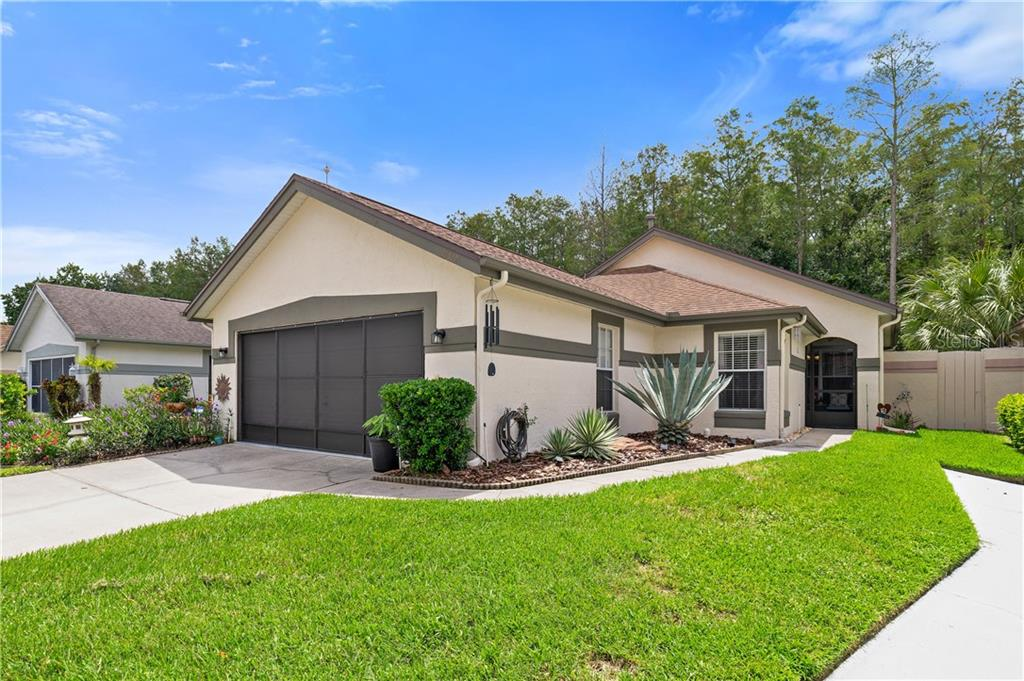 11517 PUMPKIN SEED CT Property Photo - ORLANDO, FL real estate listing