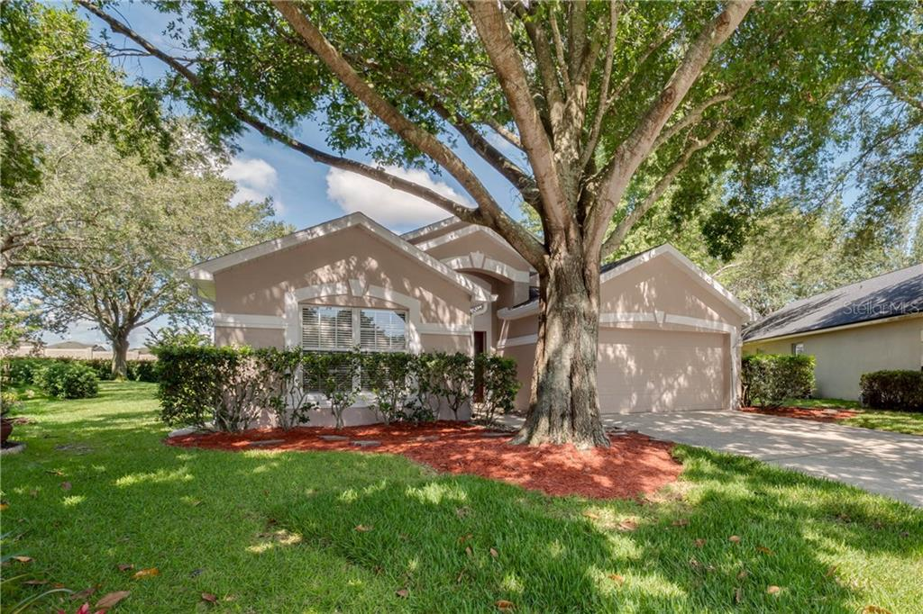 17302 SUMMER OAK LN Property Photo - CLERMONT, FL real estate listing