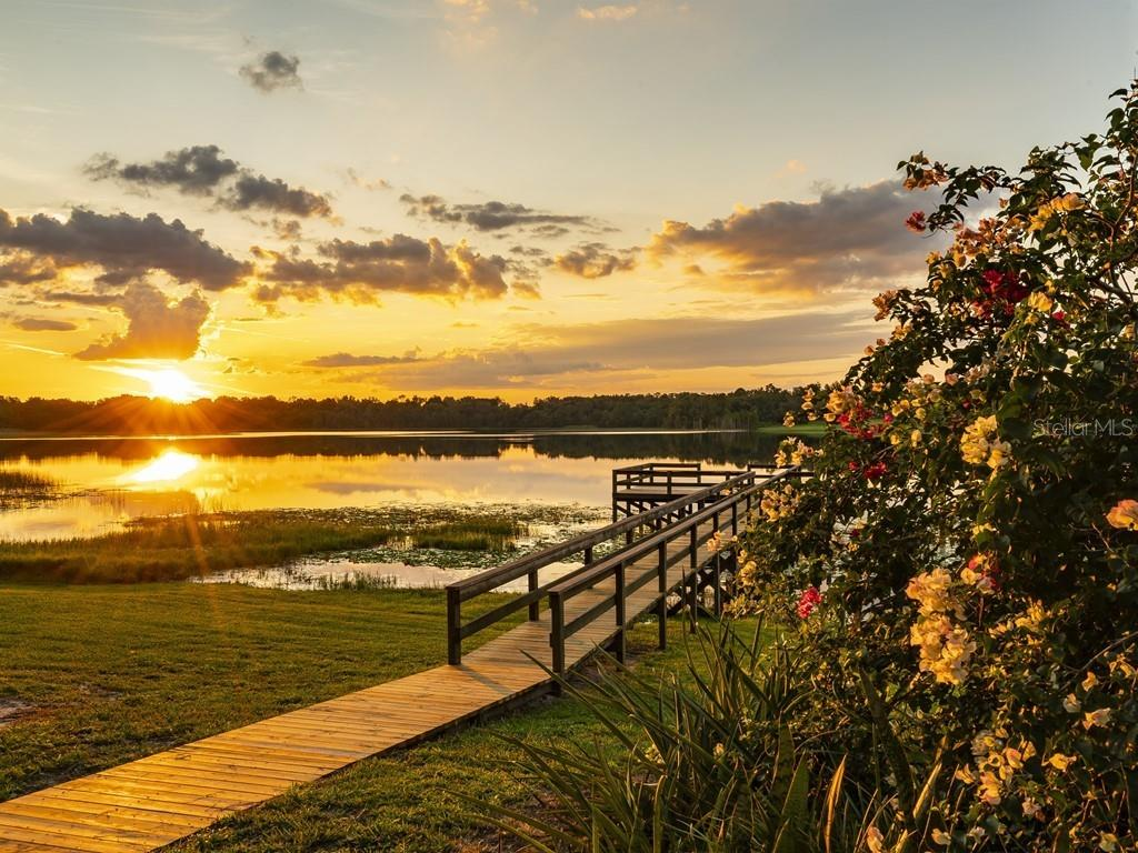 41249 SILVER DRIVE Property Photo - UMATILLA, FL real estate listing