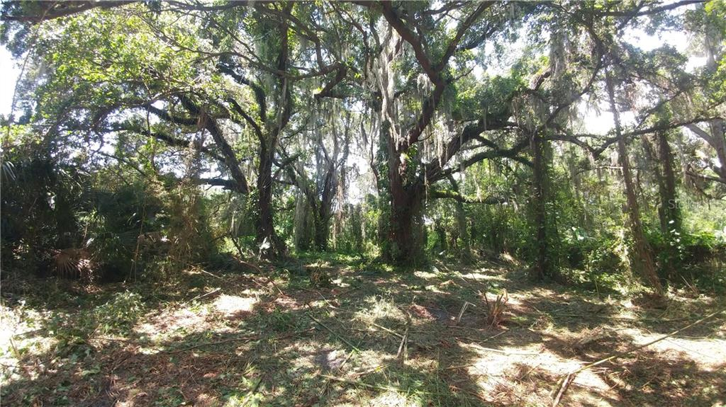 11303 WINDERMERE RD Property Photo