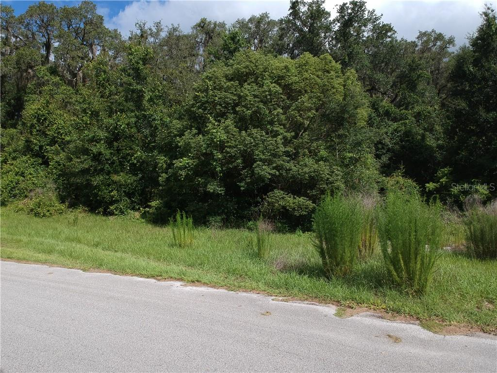 Lot 1400 Wendy Null Boulevard Property Photo