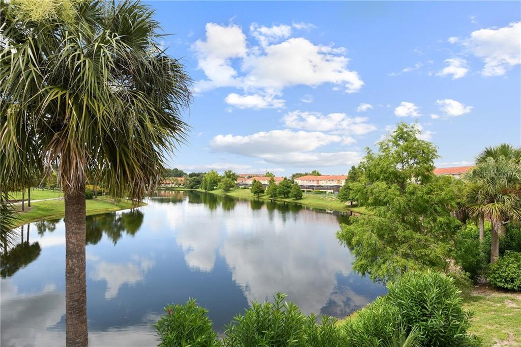 3101 YELLOW LANTANA LANE Property Photo - KISSIMMEE, FL real estate listing