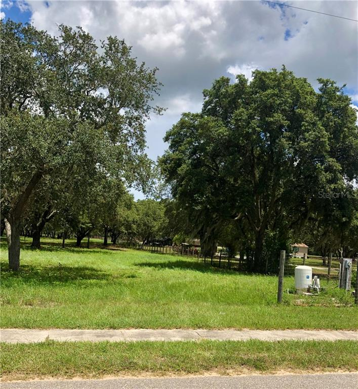 TENNESSEE AVENUE Property Photo - ASTATULA, FL real estate listing