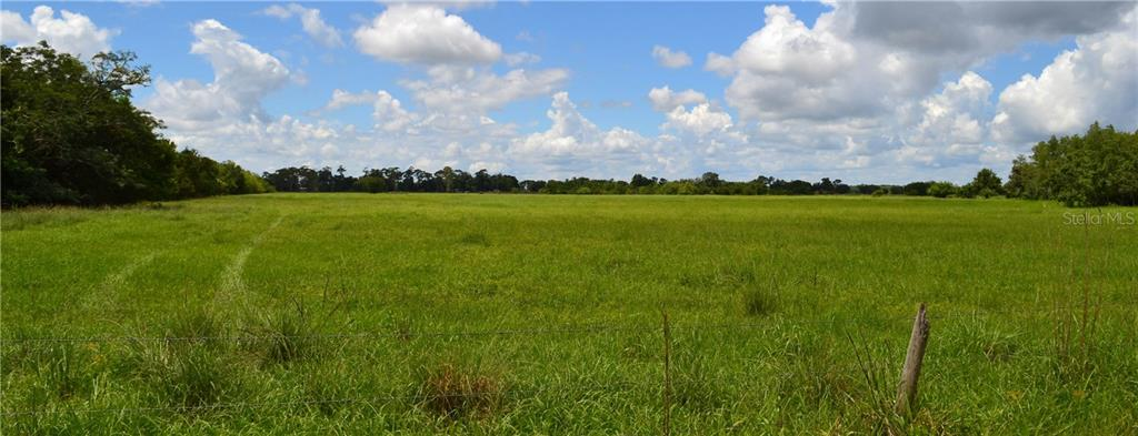 HICKORY TREE ROAD Property Photo - SAINT CLOUD, FL real estate listing