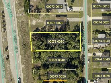 204 GUNNERY ROAD N Property Photo - LEHIGH ACRES, FL real estate listing