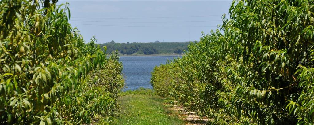 FORT MEADE RD Property Photo - FROSTPROOF, FL real estate listing