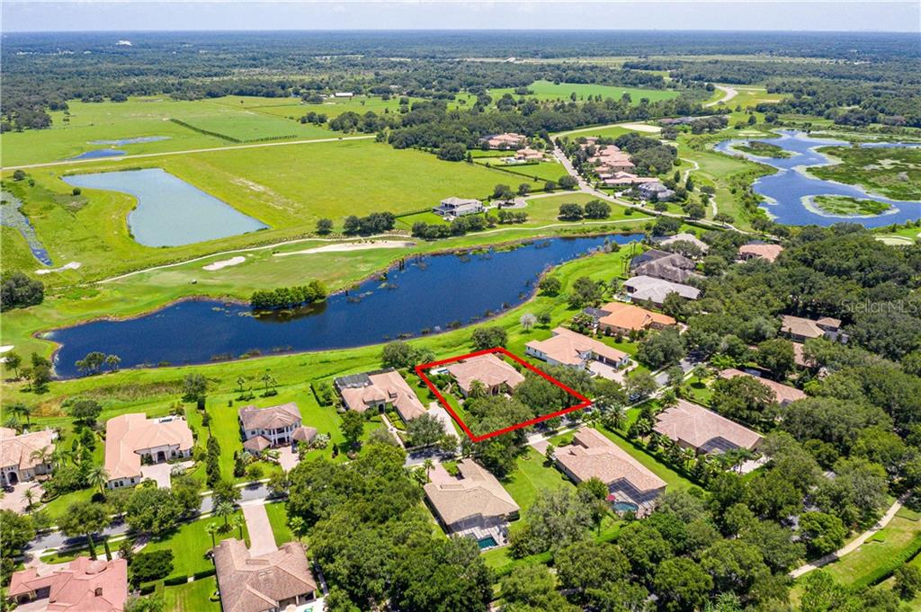 32528 HAWKS LAKE LANE Property Photo - SORRENTO, FL real estate listing