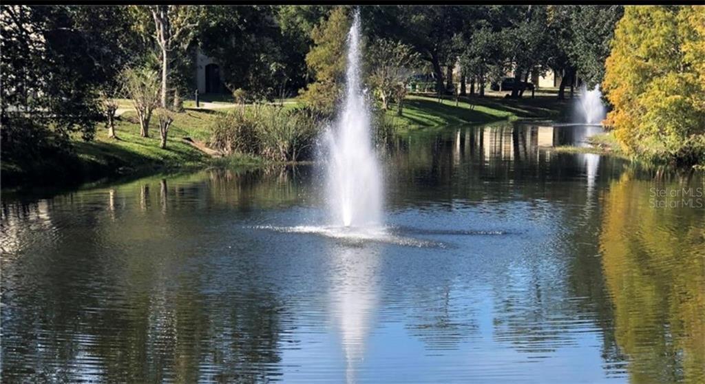 4148 Enchanted Oaks Circle #113 Property Photo