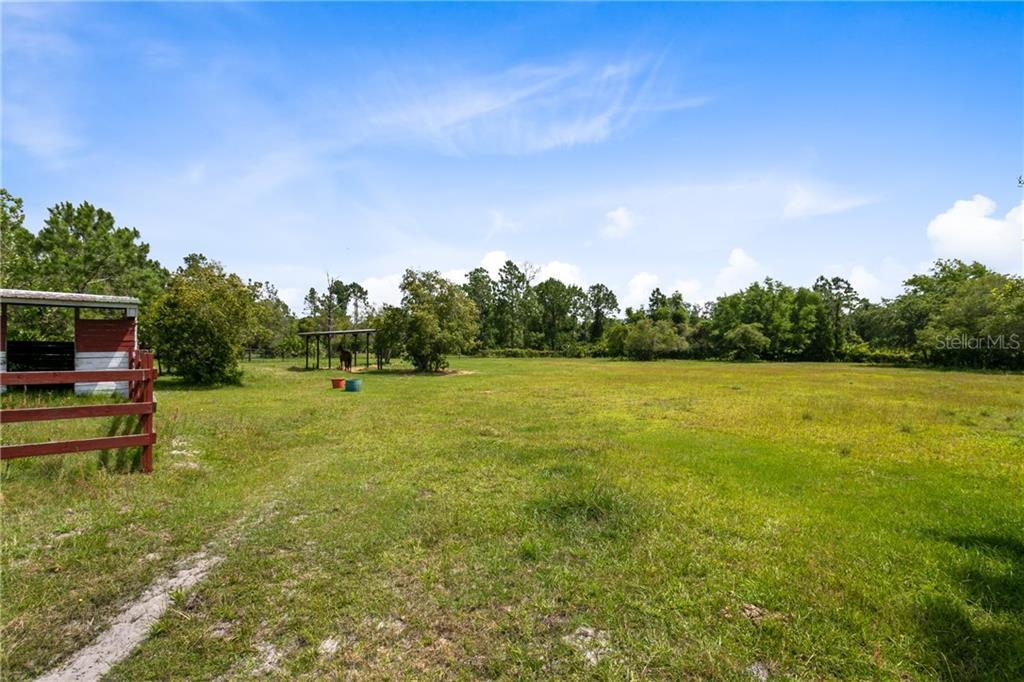 2310 WILDWOOD TRAIL Property Photo - GENEVA, FL real estate listing
