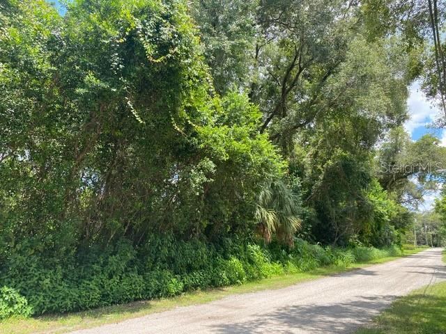 BAKER AVENUE /LOTS 23 & 24 Property Photo - LAKE HELEN, FL real estate listing