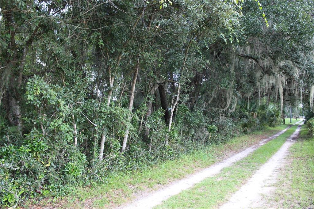 0 GREEN TURTLE Property Photo - GENEVA, FL real estate listing