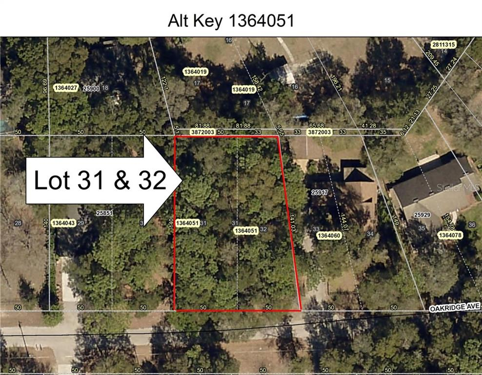 Lot 31 & 32 OAKRIDGE AVENUE Property Photo - MOUNT PLYMOUTH, FL real estate listing