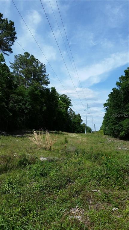 MUSTANG DRIVE Property Photo - DUNNELLON, FL real estate listing