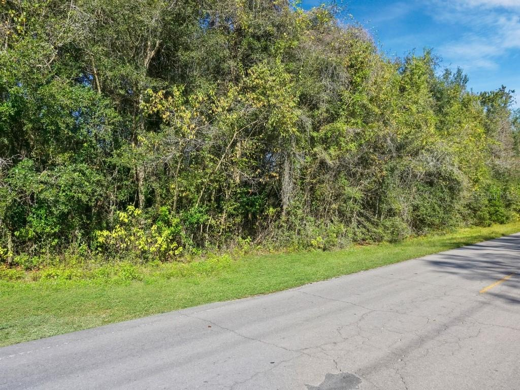 35-10-14 B J SIMPSON S/D LOT 11 OR BOOK 1264 PAGE Property Photo - TRENTON, FL real estate listing