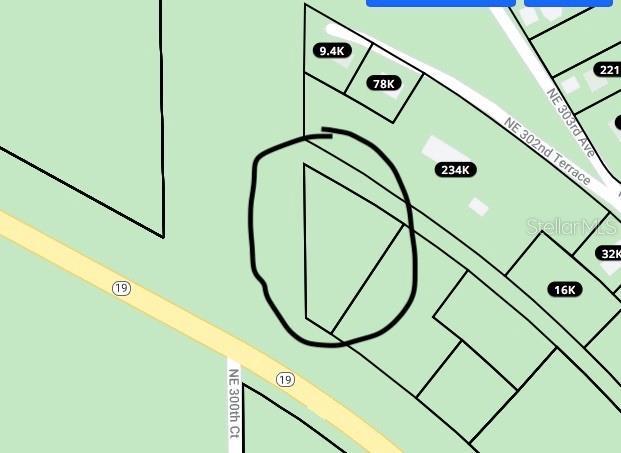 SR 19 Property Photo - SALT SPRINGS, FL real estate listing