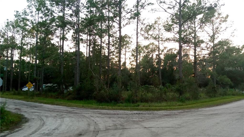 2800 PALMETTO STREET Property Photo - BUNNELL, FL real estate listing