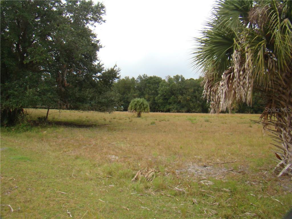 0 OSCEOLA POLK LINE ROAD Property Photo - DAVENPORT, FL real estate listing