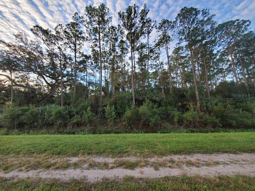 24910 E COLONIAL DRIVE Property Photo - CHRISTMAS, FL real estate listing