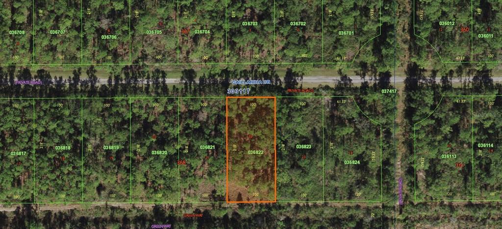 317 Gaillardia Drive Property Photo