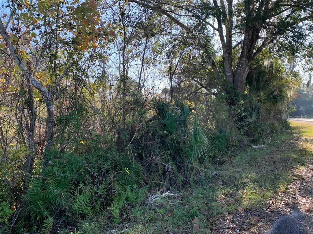 0 S CARPENTER DRIVE Property Photo - TITUSVILLE, FL real estate listing