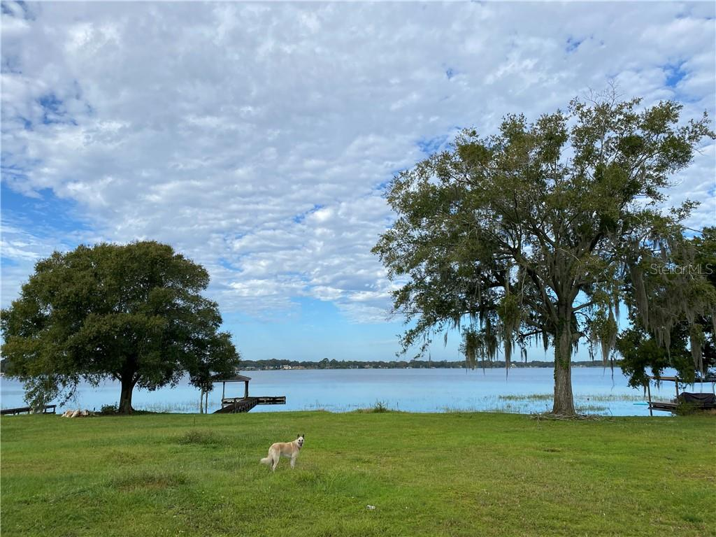 7710 DAETWYLER DRIVE Property Photo - BELLE ISLE, FL real estate listing